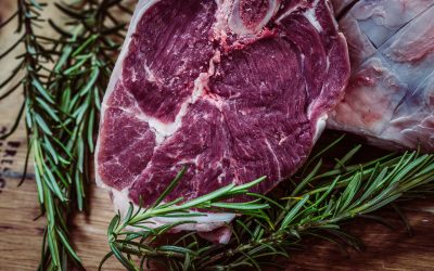 Eat Only Meat – Carnivory Anyone? Part 1